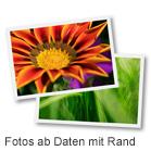 Fotos ab Daten mit Rand