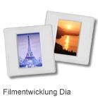 Filmentwicklung Dia